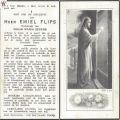 flips-emiel1880-1961